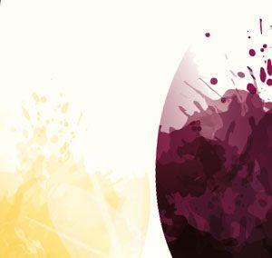 Challenge des Vins